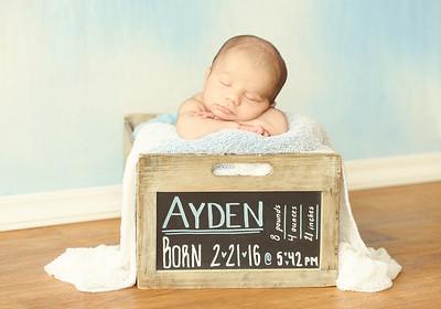 Ayden - 010