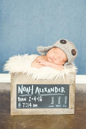 Noah - 012