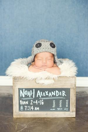 Noah - 010