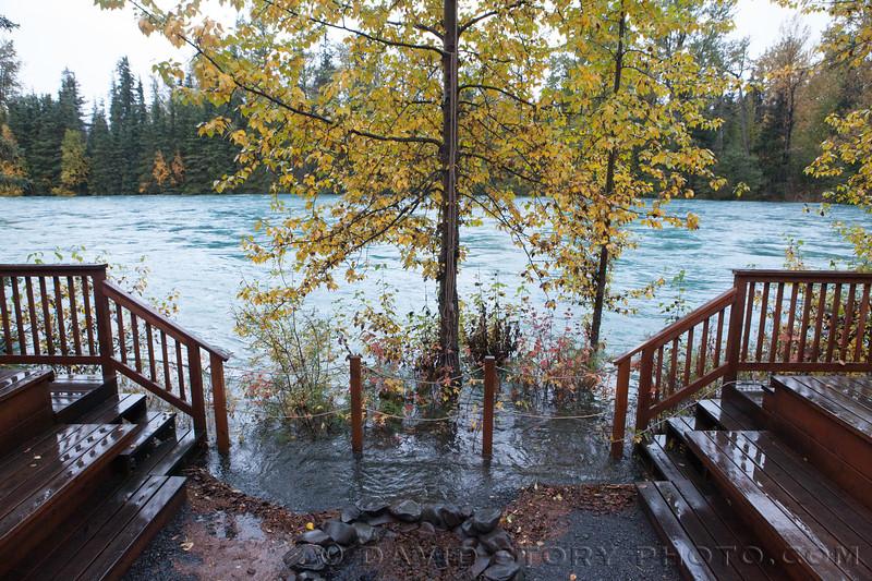 2017 09 30: Fall on Kenai Lake, AK. 09 30: Fall fat biking. 09 30: Fall colors on the Kenai Peninsula, AK. 09 24: Lichen on cottowood bark. Cooper Landing, AK. 09 24: Kenai River at nearly 16,000 CFS. Cooper Landing, AK