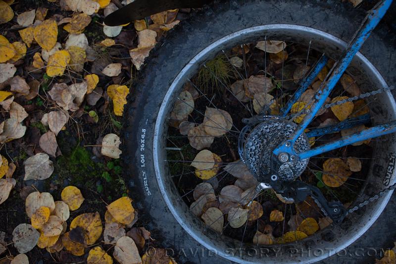 2017 09 30: Fall fatbike. Cooper Landing, AK