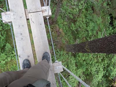 2017 07 25: Zipline walkway. Seward, Alaska