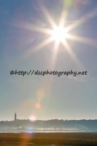 DSCPhoto_13391