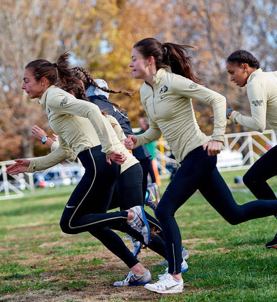 Cross Country NCAA D1 National Championships