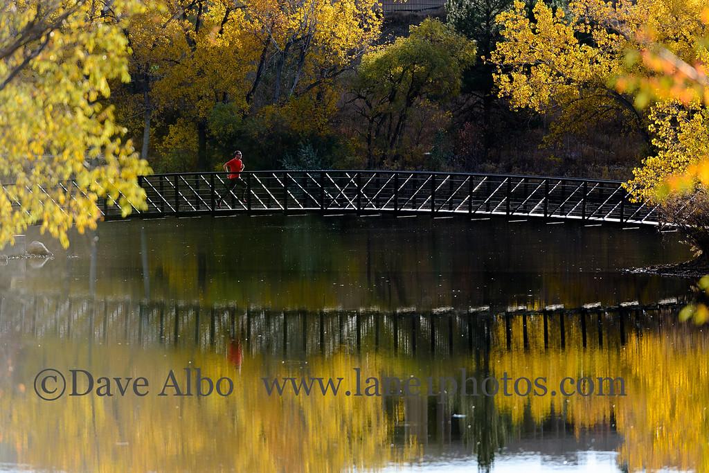 Golden Gilbert Bridge