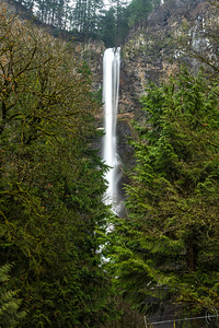 09 Apr 18	In previous mailings I've shared 4 of the 5 waterfalls we visited back in Jan when we were down in Oregon. This last one, Multnomah Falls, is the falls that most folks think of when you mention waterfalls along the northern Oregon border. The falls has two sections and there is a foot bridge above the demarcation of the two. There is also a visitors area at the base of the lower section that provides for some very nice viewing. Usually. But the fires of 2017 were such that the area near the base of the falls was severely damaged and that area is now considered so unstable that it is fenced off - you can see a small portion of the fence in the LRH corner of the image - and you can't get near the viewing area. The fire in fact I've been told almost took out the visitors center but stopped just a few feet from it. So now you can't get any of the pictures you can see on the web, some of which are located here. We had saved this falls as our last stop so we could spend the most time there but it turned out to be mostly a good idea and not much more. I did shoot a few shots, one of which I'm obviously sharing today, but due to the distance at which you must now shoot you can only see the upper section.  This is basically what the camera saw. Nikon D500; 18 - 200; Aperture Priority; ISO 50; 1.6 sec @ f /29 on a tripod.