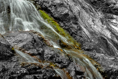 14 Aug 18  We went on a short drive around a part of Hood Canal today winding up in Brinnon and visiting a local waterfall, Rocky Brook Falls, that I've shared before and I'll be sharing again either later in the week or next week. Never visited the falls before in August and was pleased with what the falls presented with little water, in comparison with Spring melt, falling down the face of the falls. As a result much of the rocky cliff face was displayed in full color not being masked by a rush of water. Took a number of shots playing with that color most of which I've not seen prior. Today's submission is from the base of the falls and I used a slow shutter speed to give the falling water some character. I didn't bring along a tripod, (naturally I knew better), so had to shoot hand held. Fortunately the hands were sufficiently steady to pull it off today. In reality the water was whiter looking to the naked eye but I've exchanged the pure white to which everyone is accustomed for the character of the water. I trust you'll accept that as a fair exchange.  This is not what the eye saw but it is what the camera saw do to the slow shutter speed. Showing Off   Nikon D500; 18 - 200; Aperture Priority; ISO 200; 1/10 sec @ f / 25 hand held.