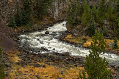 "19 Dec 18	From the West Yellowstone entrance you drive 14 miles east to Madison Junction. At this juncture you can go south toward Old Faithful and the South entrance or northeast another 14 miles to Norris Junction where you can turn north to the North entrance or east to Canyon Village and the Grand Canyon of Yellowstone where you find the two big falls. Among the more interesting rivers and falls in the park is Firehole Falls and it is the closest one to the West Entrance. Upon reaching Madison Junction you select the southern route and within about a mile you encounter Firehole Canyon Drive. This is roughly a 1 mile one way loop road and it is here that you can find the Firehole Falls, IF, the road is open. More times than not when we visit in May it is not yet open but it is always open when we visit in the fall. The spring runoff however is when you really want to see it as when the winter snows melt it is a rather spectacular fall and very noisy. Downstream from the main falls is a 45 degree sloping ""trail"" in the side of a cliff that the more adventurous can traverse to get down to the water level for a bit more adventure than just shooting the falls from above. You are looking at the Firehole river from that water level perspective in today's submission. Directly above the last boulder in the middle of the river where the water appears to disappear is the outlet of the falls and the really adventurous can make their way there to shoot the falls from its base in the autumn, but it would be foolhardy to try that during the spring runoff. Still . . . . . . . . . .  I know someone who would like to try it. This is a shot from last fall's trip and while I was shooting there was an individual who had made it along the rocks to a location directly across from the boulder I mentioned above. I was seriously thinking of going there myself but as my shooting companion elected not to accompany me down to the water I decided I could do it another time.  This is what the camera recorded. From Water Level  Nikon D500; 18 - 200; Aperture priority; ISO 800; 1/500 sec @ f / 9."