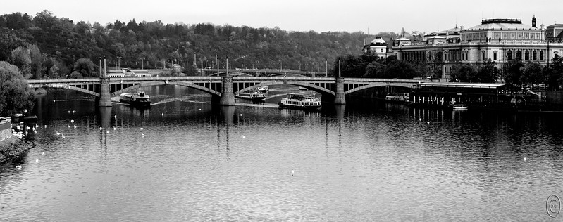 24 Jan 18The boat on which we made our cruise would not have cleared these bridges in Praha, nor any of the other 7, but that doesn't mean that there aren't boats who could as today's submission clearly depicts. There are five cruise boats in this shot and it wasn't uncommon to see more at any one time. You name your time and destination and there will be a boat to meet your needs. The boats as positioned in this image remind me of my youth and the hydroplane races that ran each August as part of Seattle Seafair. (They still do but the races aren't even close to being of interest anymore due to all the changes in their design.) Of course the Seafair boats were loud and dangerous while these on the Moldau are very safe and quiet. Both have their place and I enjoyed them in their respective roles, but given the option, I'd prefer to return to the land of river cruises.  Other than having been converted to B&W, this is pretty much what the camera saw.  Nikon D500; 18 - 200; Aperture Priority; ISO 400; 1/400 sec @ f /10.