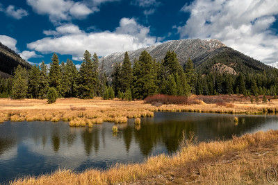 14 Nov 18	Last trip image for the week.  Beaver Creek viewing area which you are seeing today lies between Quake and Hebgen lakes and is a small pond like area on both sides of the road (hwy-287) but which is fed by a small river/large creek - Beaver Creek - that winds far back into the woods. it is prime grizzly country as well as home to elk and moose for sure because I've photographed both there in the meadow but I'm sure there's much more. There are generally a number of water fowl present as there was when I took this shot but they decided to re-position themselves as soon as I got out of the vehicle. Guess they might be getting a little camera shy. I've shared a couple other shots from here before one of which you might recall which was a nesting Sand Hill Crane. It's a spot we pass both coming and going to the condo at a minimum each trip and while I always find it a beautiful location, this past trip was the most colorful I've experienced it. All it was lacking that Friday morning was some form of large game.  This is straight from the camera. Beaver Creek Autumn  Nikon D500; 18 - 200; Aperture Priority; ISO 400; 1/1250 sec @ f / 9.