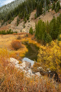 26 Nov 18	Back to the Yellowstone travels for today's submission. The image for today is of a small feeder creek for the Gallatin River and a spot one could easily miss if not driving at a speed sufficiently slow to take in the surrounds on both sides of the road, in this case Highway 191. As you know this is one of my favorite roads in America and one I never tire of driving any time of the year. On this particular occasion I was killing time waiting for a plane arrival in Bozeman trying my best to maximize my time in the park and minimize my airport wait. I did it pretty well as my wait at the airport was maybe 5 minutes. It was a day of playing with the weather and for this shot the sky wasn't cooperating so in full disclosure I had to replace that bit of sky in the upper LH corner as well as its reflection in the water with a sky I shot earlier in the day. One of those occasions where you get what you can when available and use as appropriate later. It was a fun day of shooting even if a bit challenging and this is another shot from that Friday shoot that I've been sharing.  Other than the sky manipulation this is what the camera recorded. Watering Hole  Nikon D500; 18 - 200; Aperture Priority; ISO 400; 1/250 sec @ f / 9.