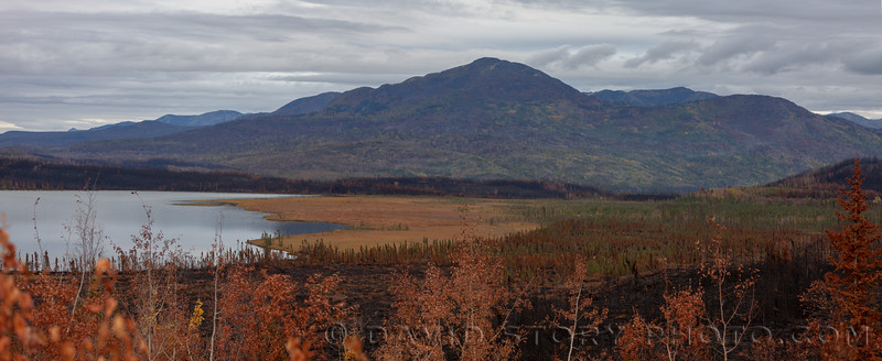 2019 09 21: The burned areas from the 2019 Swan Lake Fire surround much of Engineer Lake. Kenai National Wildlife Refuge, AK.