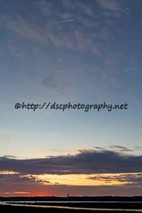 DSCPhoto_24226
