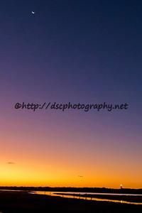 DSCPhoto_23428