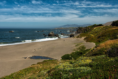 01 Aug 19	Perhaps 30 minutes north of Bodega Bay the road begins to really hug the shoreline and provides some really spectacular views. This was to be the beginning of a winning combination of water, rocks, skies, and vegetation which lasted for several hours of driving, albeit not always going the speed limit because one of us wanted to take photos. I'm just guessing but I think we were visiting in the middle of the vegetation bloom as we encountered the flowers in various stages from just starting to full display to past perfect. The combination however was truly nice and perhaps the best display I can recall having experienced during our three tours in CA. On top of the flora show the clouds were to put on a grand display and even Jan couldn't stop pointing them out to me throughout the day's drive. What you see in this shot was just the beginning of a performance that lasted until dusk.  Other than a small amount of straightening and contrast enhancement, this is what the camera saw. Roadside Delight  Nikon D500; 18 - 200; aperture priority; ISO 100; 1/320 sec @ f /11.