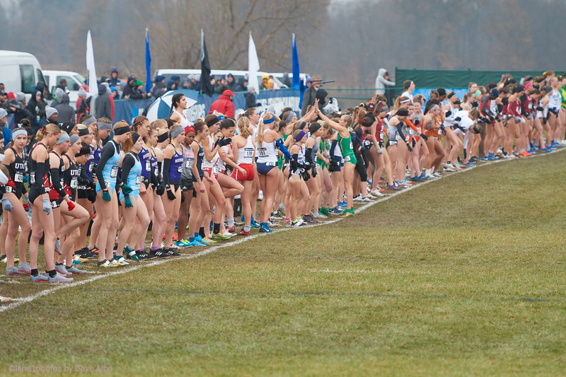 NCAA Cross Country D1 National Championships 2019