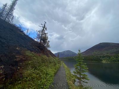 2020 06 13: Swan Lake Fire scar. Resurrection south. Chugach National Forest, Alaska.