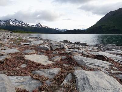 20200 06 21: Cooper Lake, AK.