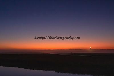 DSCPhoto_30298