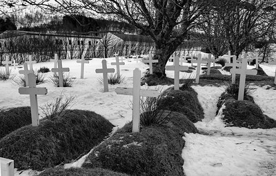 19 Nov 20The trees on the left hand side of the church in yesterday's mailing are the same trees in the image I'm sharing today. The grounds on the back side of the church are totally comprised of this small graveyard. The conditions that morning were anything but conducive to photography as the ground was super slippery (snow covered ice!), the area crowded (we weren't the only folks there), and lots of cluttered surroundings. On top of all that the colors of the landscape weren't their prettiest, the grass being a sorta yucky yellow-green, so I've elected to convert to B&W which I think does the setting more justice.  The goal of this shot was primarily documentary as one doesn't often find the graves in a cemetery above ground as they are here. There were a couple of reader boards describing the church and its history, but I don't recall anything being said as to why the graves are above ground. The link I shared yesterday shows them in nice light with the grass beautifully green. If you haven't already jumped out to look at it you might want to do so now. There are only 6 of these turf churches remaining in Iceland if I understand correctly; might be fun to visit all of them on another visit. For those of you who like to play around with these mailings you might consider chopping off the entire top half of the shot at the fence line. While it would no longer tell the whole story, it would get rid of all the noise (buildings) in the back.  Other than the conversion to B & W, this is what the camera recorded. Monochromatically  Nikon D500; 1 - 200; Aperture Priority; ISO 200; 1/320 sec @ f / 9.