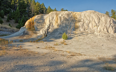 14 Apr 21	Those of you who pay attention to my constant ramblings on about YNP know that my favorite location in the park is at Mammoth Hot Springs, on the Upper Terrace complex, and is called Orange Mound. Some of you may even recall a mailing from 2007 where I shared a shot of this feature that I had taken that fall that was printed in a major nature magazine; only it was an identical image taken by another! But it made me feel good that an identical image had made it into print. I've been following this beautiful mound of rock ever since. Last fall I was totally shocked when I visited it. Almost all of the color was gone, there was close to no water flowing out of it, and it looked like it had almost died. It was sad!!! I took maybe 10% of the pictures I would have normally taken, and then moved on wondering what next would be as drastically different as this and Canary Spring. I wouldn't have to go far to find out but that's another mailing. If you save these mailing go look at those of Orange Mound from years past. If you don't, and you are curious, the blog holds many!  I've cropped off the top of the shot that was just boring blue sky and brightened a section on the left (trees) that was in dark shadow. Otherwise, this is what the camera captured. Changed  Nikon D500; 18 - 200; Aperture Priority; ISO 200; 1/640 sec @ f / 9.