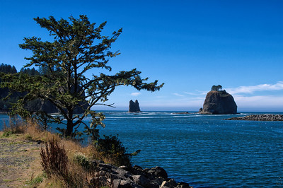 24 Aug 21Near the town of La Push can be found a series of beaches with very unique names, namely First, Second, and Third Beach. With all the Indian names adorning everything around this state one would think that we could come up with something a bit more interesting than First, Second, and Third. But that's how they are named and known. Today we have a shot taken from First Beach on an unusually calm day. We haven't visited these beaches in quite a while and I'm thinking it is time to pay them another visit. This is a shot taken just under 4 years ago as the tide was going out and the seagulls already circling around looking for a nice meal. When the weather is calm as it was on the day of this visit it is a very idyllic spot but not nearly as interesting as it is on a stormy day. If you've never visited these beaches I highly recommend you try to do it on a stormy day; it will be an unforgettable experience!  This is straight from the camera. Idyllic  Nikon D500; 18 - 200; Aperture Priority; ISO 200; 1/250 sec @ f / 9.