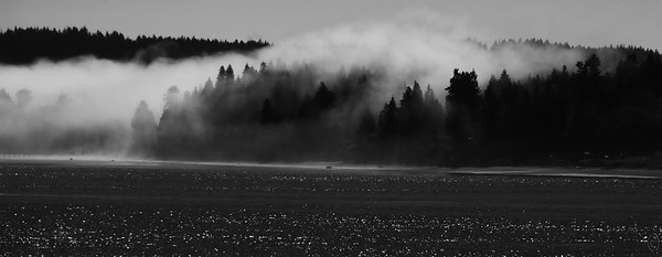13 Jul 21     Heading out Monday a.m. we thought it odd that we had an amount of fog rolling through a neighbor's property but no fog horns sounding just a short distance away at the ferry terminal as they always do during foggy weather. Found out why as we started across the Hood Canal bridge as there was a single band of fog stretching across the canal but constrained in such a way as to look somewhat like it was being blown through an invisible tube. It did however make for some interesting views as it hid some objects, somewhat shrouded others, and left most everything else in plain view. Here is one of those more interesting areas.  This is straight from the camera save  for some cropping off of unneeded material and conversion to B & W using the nik Silver Efex Pro 2 plugin. High Contrast  Nikon D500; 18 - 200; Aperture Priority;  ISO 200; 1/2,000 sec @ f / 9.