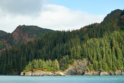 Holgate Arm of Aialik Bay, Kenai Fjords National Park.