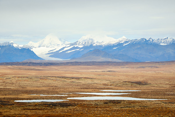 Views of the Alaska Range from the Denali Highway near Paxson, Alaska.