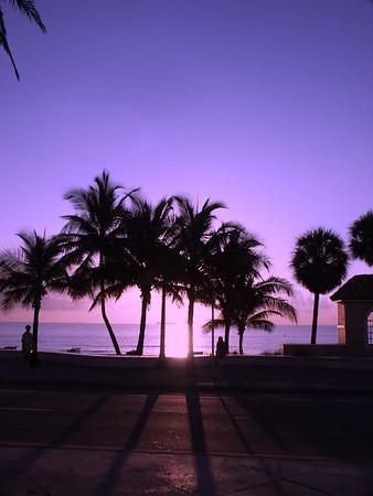 Cobb Lauderdale
