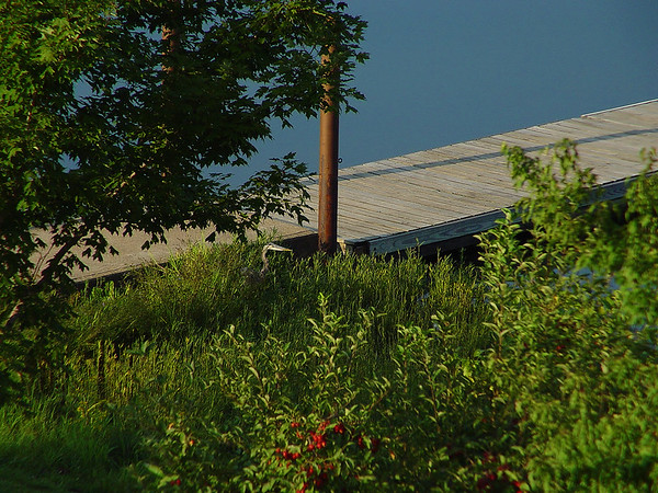 Betcha supper's right over there.<br /> <br /> YMCA of the OZARKS, Potosi MO.<br /> September 2005