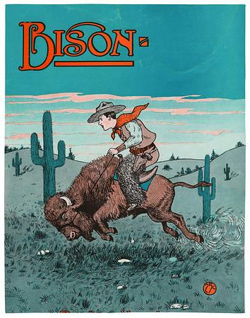 Bison, Nov. 1924