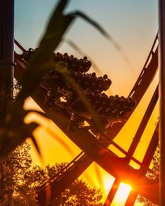 Valravn ride at sunset