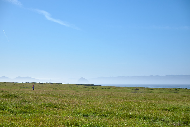 Hiking towards the Estero Bluffs with Morro Rock in the distance