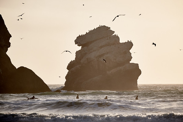 Surfers ending their day at Morro Rock