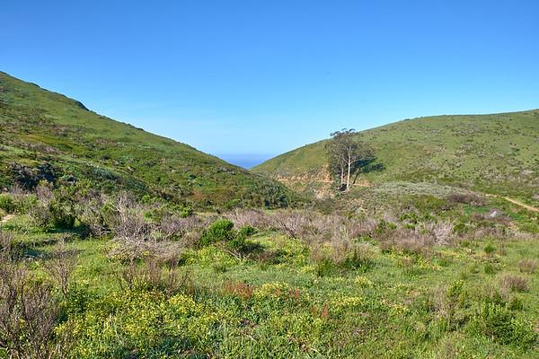 Harmony Headlands hiking trail