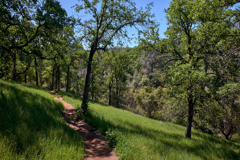 The trail to Natural Bridge