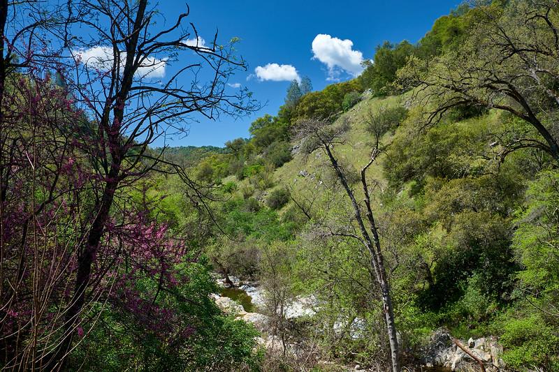 The hiking trail to Natural Bridge