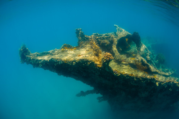 The bow of the Andes in Deep Bay, Antigua.  Burned and sank in 1905.