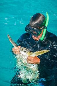 Steve hauling in a green sea turtle after a long chase in the water