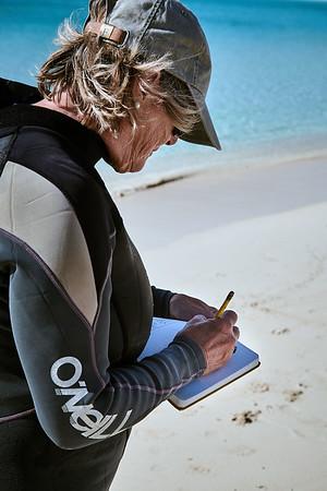 Barbara taking notes on the turtle's biometrics