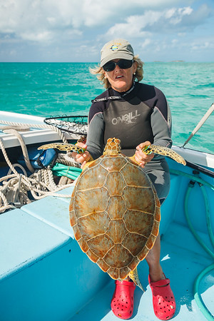 Barbara holding the first turtle captured that day