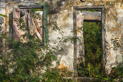 One of the many abandoned houses in Bennett's Settlement