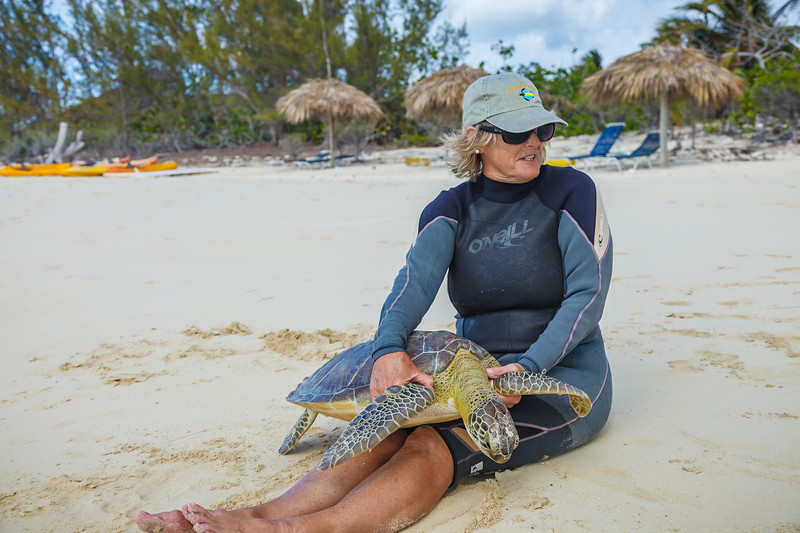 Barbara holding one of the turtles prior to taking measurements