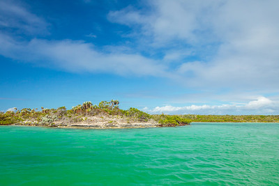 Exploring the shallow mangrove creek in the interior of Conception Island