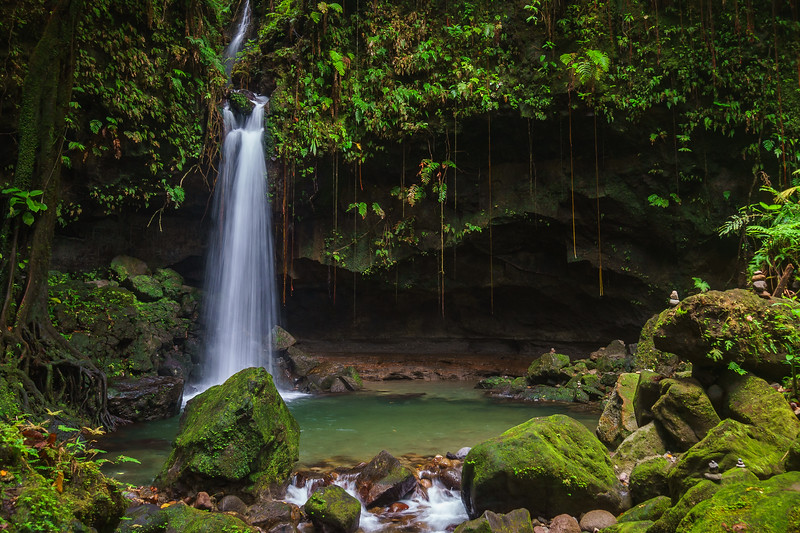 Emerald Pool in Dominica