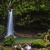Emerald Pool in Dominica