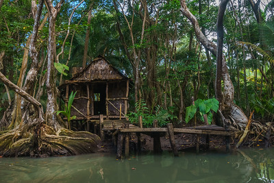 Tia Dalma's house from the second Pirates of the Caribbean movie