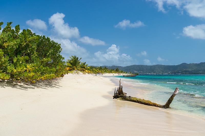 The clean expanse of beach on Sandy Island.