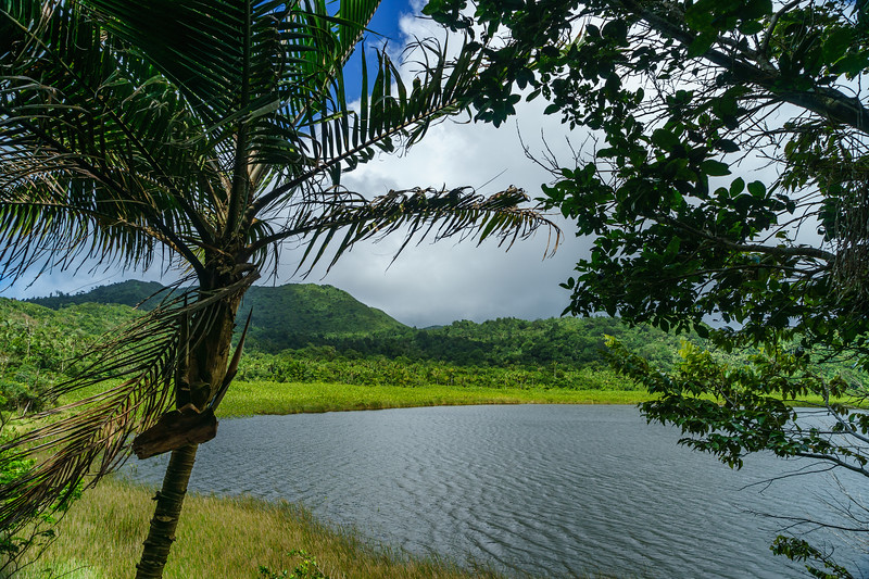 Final views of Grand Etang Lake before disappearing into the jungle on the shoreline trail.